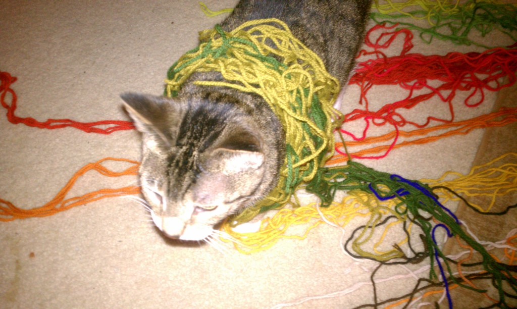 Cooper demonstrates the challenges presented from tangled yarn